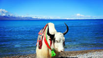 4-Day Lhasa and Lake Namtso Private Tour, Lhasa, Multi-day Tours