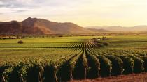 Ensenada Shore Excursion: Entre Santos and El Cielo Winery Tours with Lunch, Ensenada, Ports of ...