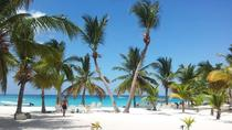 La Romana Shore Excursion: Special Saona Tour, La Romana, null