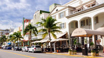 Miami Shore Excursion: Private Miami City Tour, Miami, null