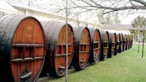 Private Maipo Valley 'Concha y Toro' Wine Tour from Valparaiso, Valparaíso, Wine Tasting & ...