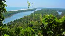 Private Puntarenas Shore Excursion: Tarcoles River Boat Tour at the Jungle, Puntarenas, Private...