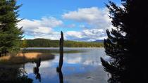 Private Shore Excursion to Coyhaique National Reserve from Puerto Chacabuco, Patagonia, Ports of ...