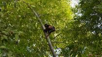 Private Tour: Fishermen and Pacoche Humid Forest Walking Tour, Manta, Private Sightseeing Tours