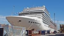 Private Transfer Hotel to Buenos Aires Cruise Terminal - One Way or Round Trip, Buenos Aires