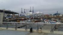 San Antonio to Santiago: One-Way or Round-Trip Private Transfer, Valparaíso, Private Transfers