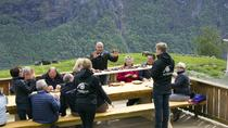 Wine Tour at Hellesylt, Western Norway, Ports of Call Tours