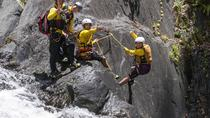 Cairns Canyoning Experience from Cairns or Northern Beaches, Cairns & the Tropical North, ...