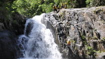 Small-Group Afternoon Canyoning Experience from Cairns or Port Douglas, Cairns & the Tropical...