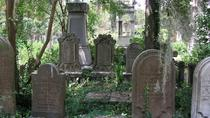 Small Group Haunted History Walking Tour of Charleston, Charleston, Ghost & Vampire Tours