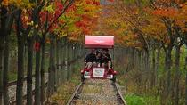 Gapyeong Rail Bike Discount Reservation - 4-seater Bike, Seoul, 4WD, ATV & Off-Road Tours