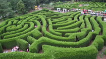 Jeju Kimnyoung Maze Park Discount Ticket, Jeju, Theme Park Tickets & Tours