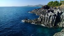 Jeju One Day Bus Tour Package (South), Jeju, Day Trips