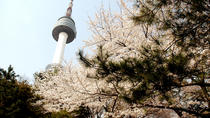 N Seoul Tower Combos Reservation, Seoul, Attraction Tickets