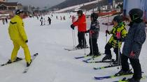 One Day Ski Tour at Vivaldi Park from Seoul, Seoul, 4WD, ATV & Off-Road Tours