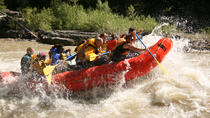 Classic Whitewater Rafting Trip, Jackson Hole, White Water Rafting