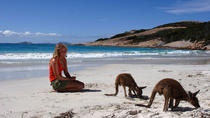 10-Day Adelaide to Perth Camping Adventure, Adelaide, Multi-day Tours