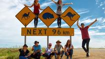 9-Day Perth to Adelaide Nullarbor Camping Adventure with Optional Shark Cage Dive and Swim with ...