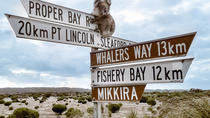 Private Port Lincoln Day Tour: Tasting Eyre, Port Lincoln, Private Sightseeing Tours
