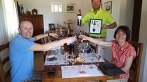 Small Group Tour: Vineyard Wine Tasting and Lunch, Montevideo, Wine Tasting & Winery Tours