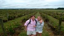 Small Group Tour: Wine-Tasting Tour from Montevideo, Montevideo