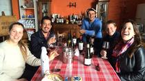 The Tannat Wine Experience from Montevideo, Montevideo, Wine Tasting & Winery Tours