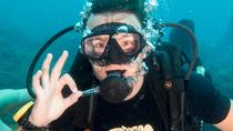 Try Scuba Diving in Koh Tao with Transfer, Thailand, Scuba Diving