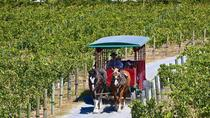 Half-Day Horse-Drawn Trolley Shuttle to Temecula Wineries, Temecula, Wine Tasting & Winery Tours
