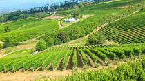 Cape Winelands Meal and Wine Private Helicopter Tour from Cape Town, ケープタウン