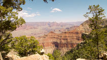 Dagtrip naar de South Rim van de Grand Canyon vanuit Las Vegas met optionele helikoptertour, Las ...
