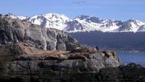 Beagle Channel Yacht Sailing Tour from Ushuaia, Ushuaia, Sailing Trips