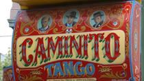 Buenos Aires Historical City Tour: Tango and Football, Buenos Aires, Super Savers