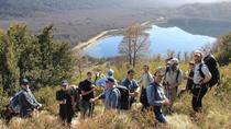 Cerro Falkner Hiking Tour from San Martín de los Andes, San Martin de los Andes, Day Trips