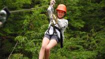 Cerro Lopez Zipline Adventure from Bariloche, Bariloche, Ziplines