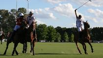 Half-Day Polo Experience in Buenos Aires, Buenos Aires, Half-day Tours