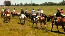 Horseback Riding And Countryside Day, Buenos Aires, Horseback Riding