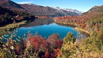 Lake Moreno or Lake Gutiérrez Kayak Tour from Bariloche