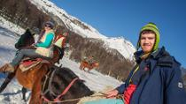 Lanin National Park Horseback Riding Tour: Quila Quina Valley and Mapuche Culture, San Martín ...