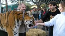 Luján Zoo from Buenos Aires Including Tiger Petting, Buenos Aires, Multi-day Tours