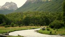 Tierra del Fuego National Park Tour by Bus or End of the World Train, Ushuaia, Day Trips