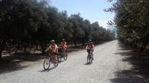 Tolombon Artisanal Wineries Bike Ride from Cafayate, Cafayate, Bike & Mountain Bike Tours