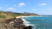 Oahu Private Island Tour: Waikiki, North Shore, and the Dole Plantation, Oahu, Private Day Trips