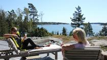Private Summer Cottage and Sauna Experience, Helsinki, Day Trips