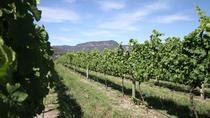 Private Luxury Blue Mountains Day Trip Including Lunch and Wine Tasting, Sydney, Private ...