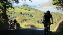 Otago Peninsula Bike Tour from Dunedin, Dunedin & The Otago Peninsula, Bike & Mountain Bike...