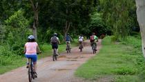 Half Day Cycling Tour to the White temple, Chiang Rai, Bike & Mountain Bike Tours