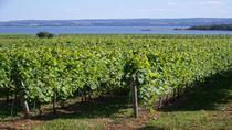 Small-Group Annapolis Valley Wine and Food Tour from Halifax, ハリファックス