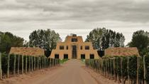 Catena Zapata Wine Tour from Mendoza, メンドーサ