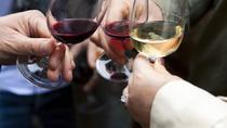 Luján de Cuyo Wine-Tasting Tour from Mendoza, Mendoza, Wine Tasting & Winery Tours