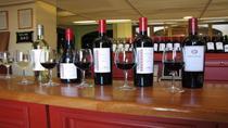 Luján de Cuyo Wine-Tasting Tour from Mendoza, Mendoza